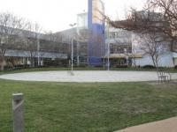 Google Headquarters Volleyball ground