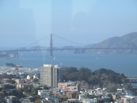 View from the Coit Tower 2