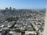 View from the Coit Tower 3