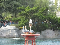 Disneyland019.jpg